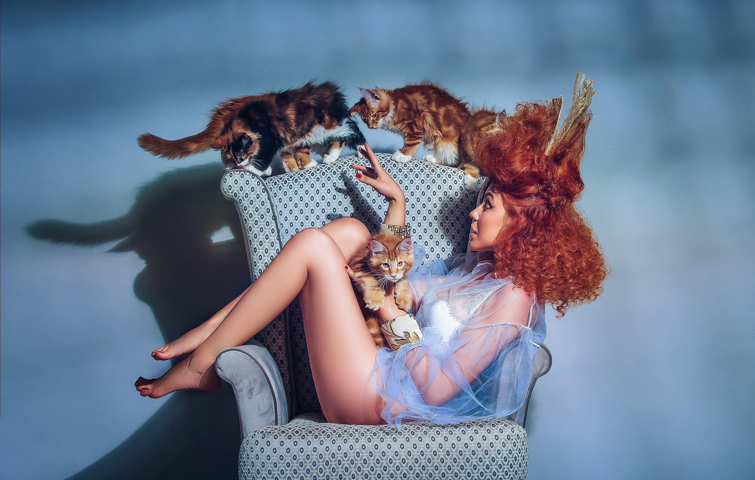 crina popescu pisici