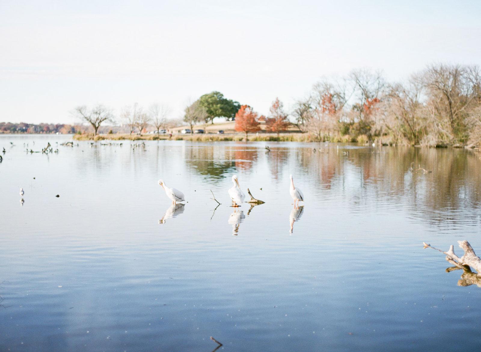Dallas Arboretum Engagement-JenSymes-57.jpg