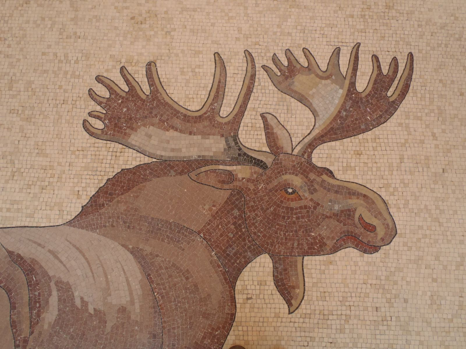 VMMB Mosaic Moose Close up.jpg