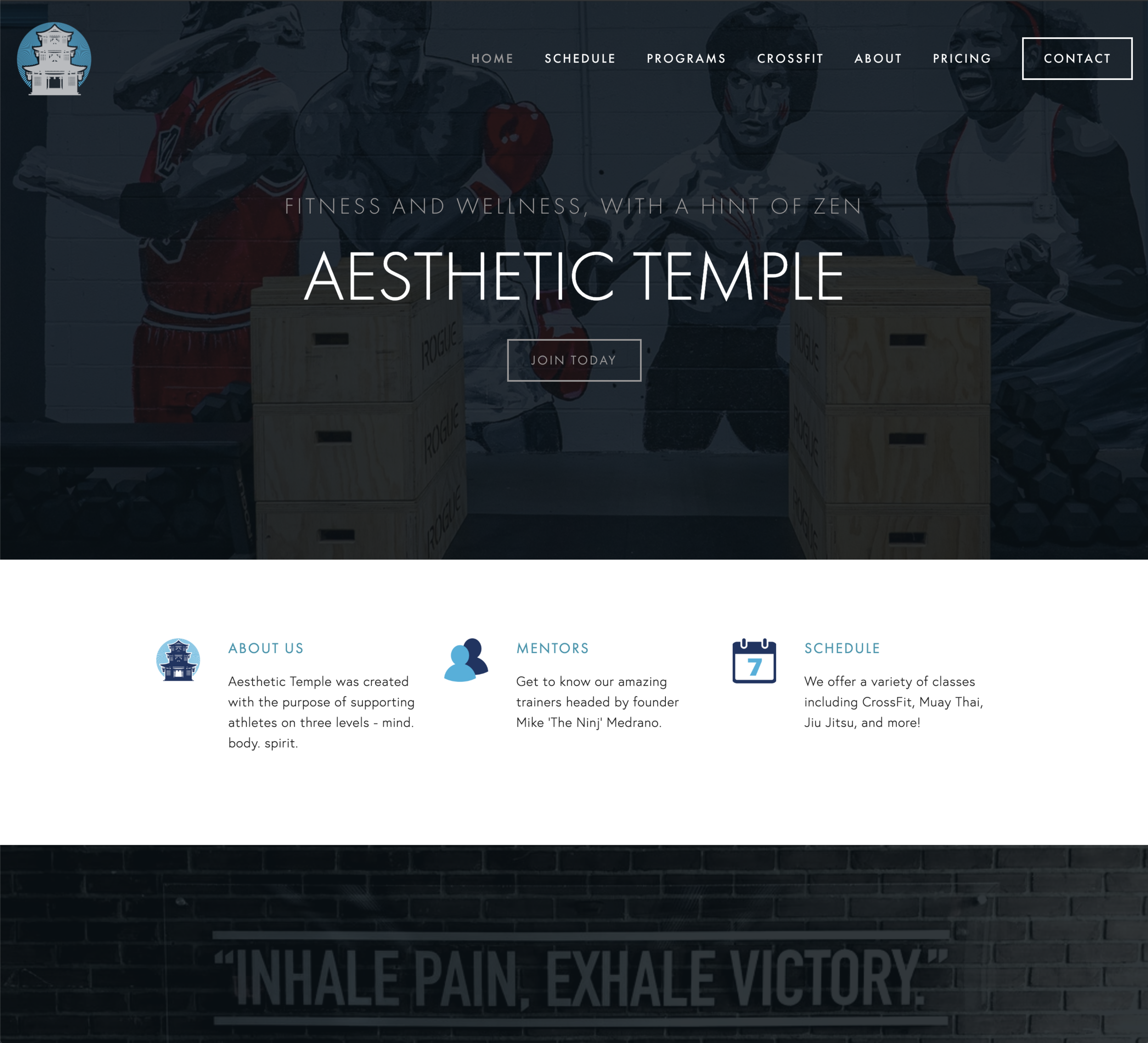 Aesthetic Temple Website