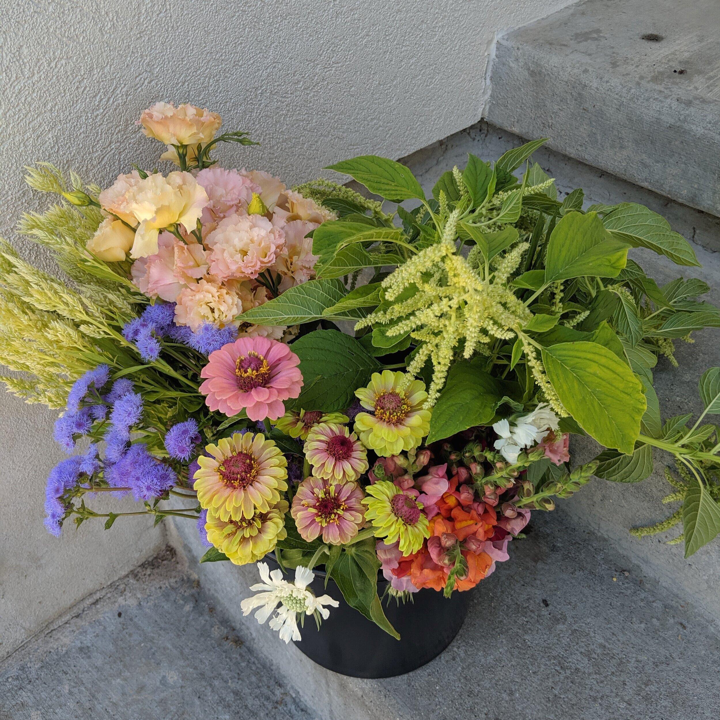 Utah grown flowers
