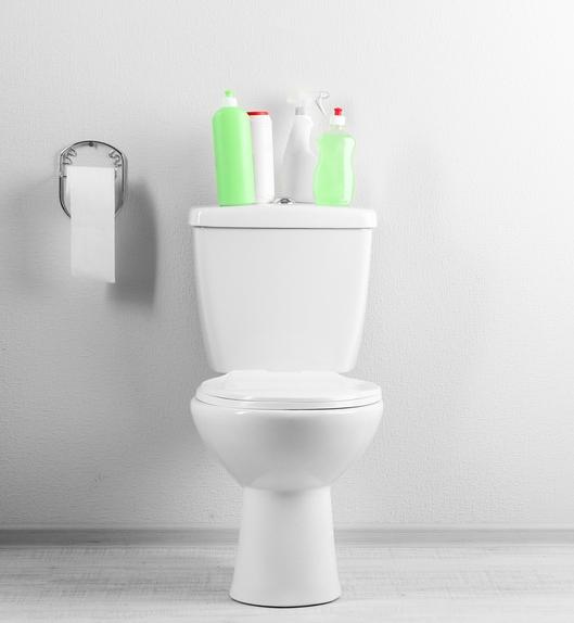 Clean House Bathroom_Extra.jpg
