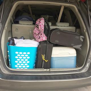 tridy trunk trip.JPG