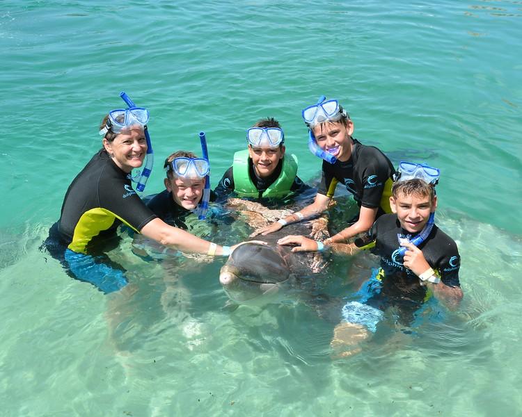 boys and dolphins hess jardine.jpg