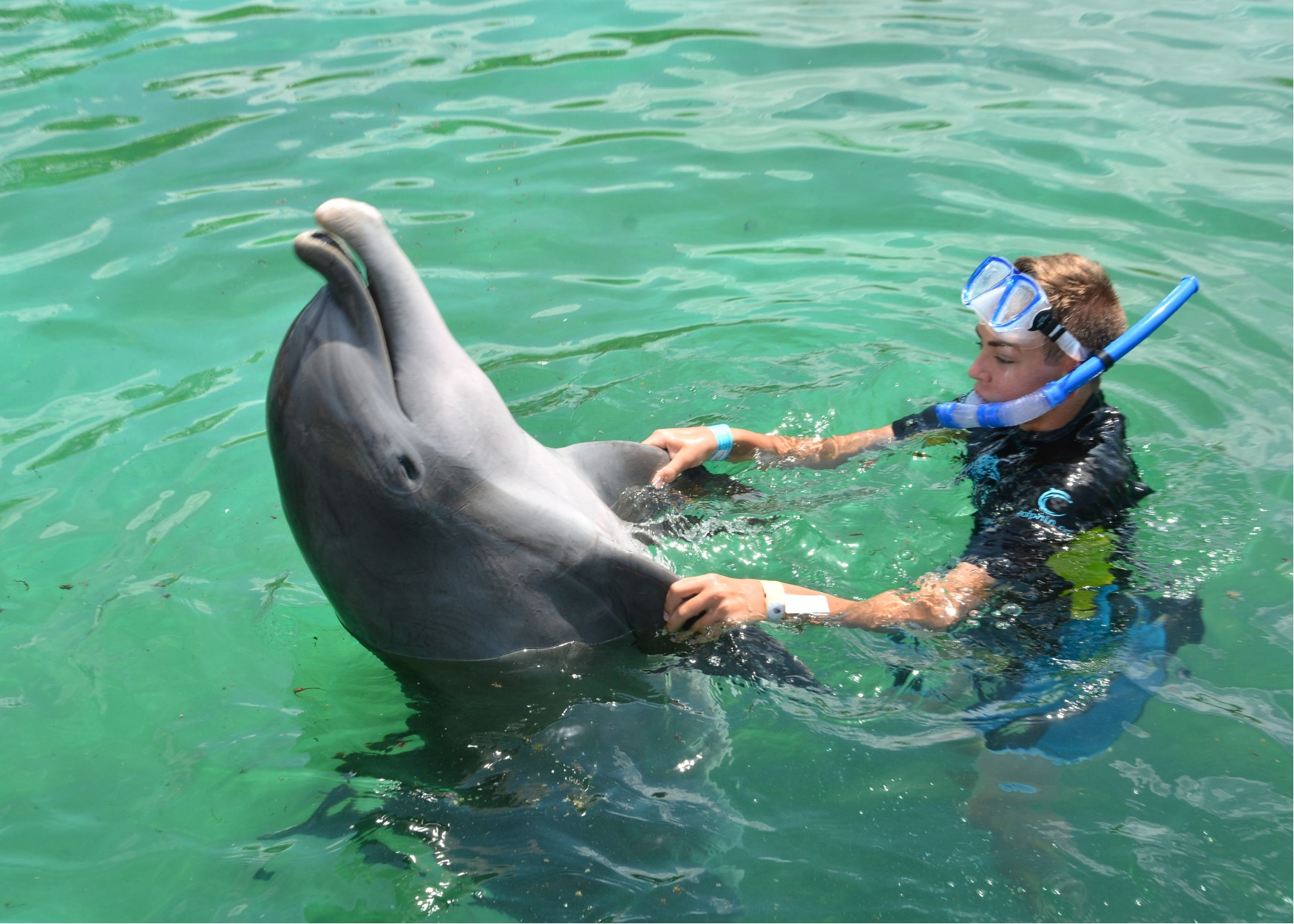 cade dolphin dance.jpg