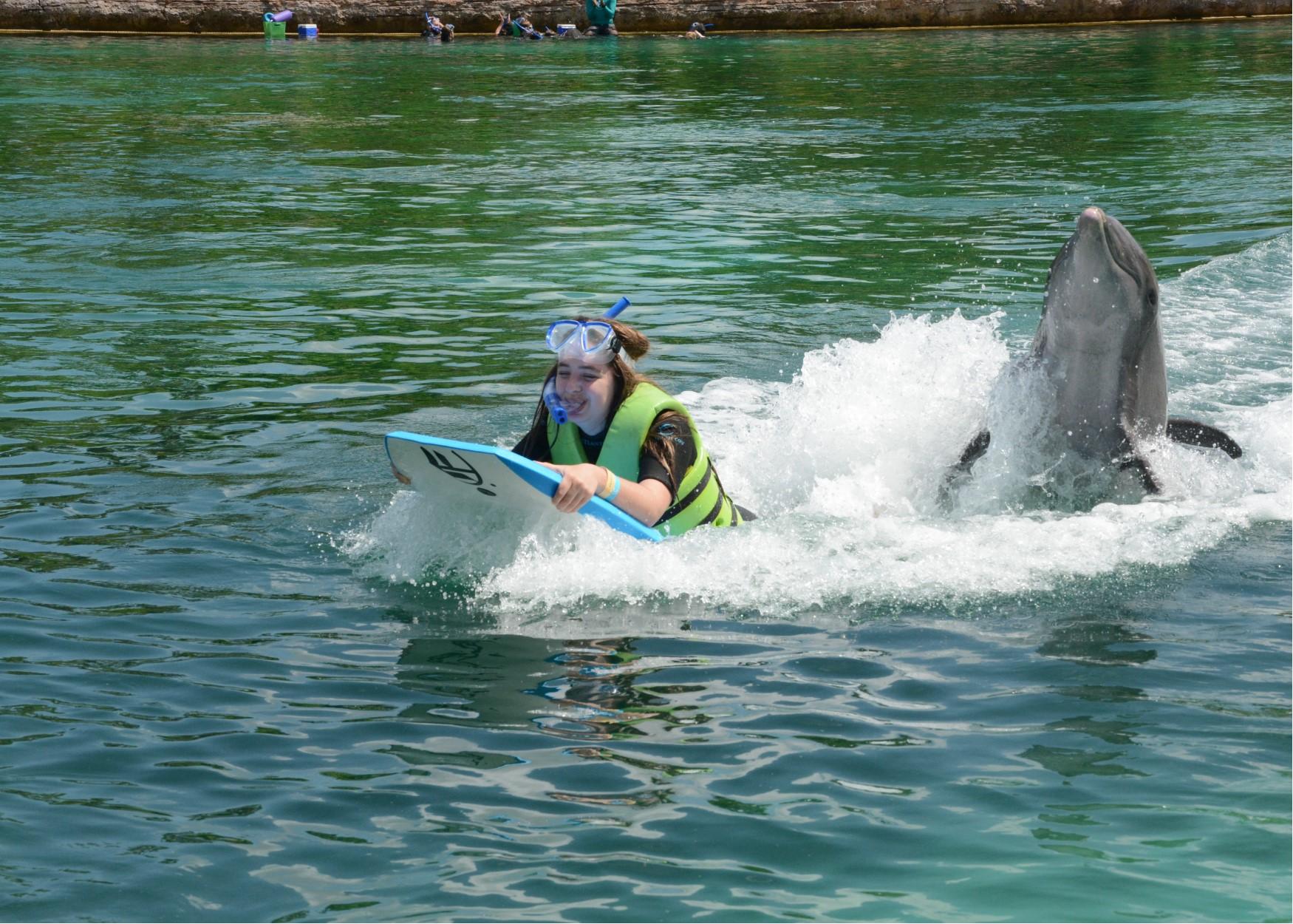 cass dolphin push.jpg
