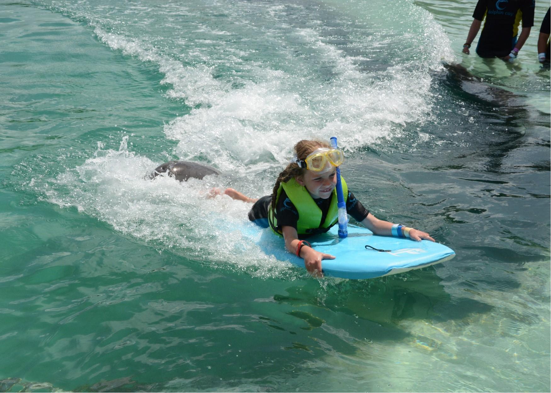 hallie dolphin push.jpg