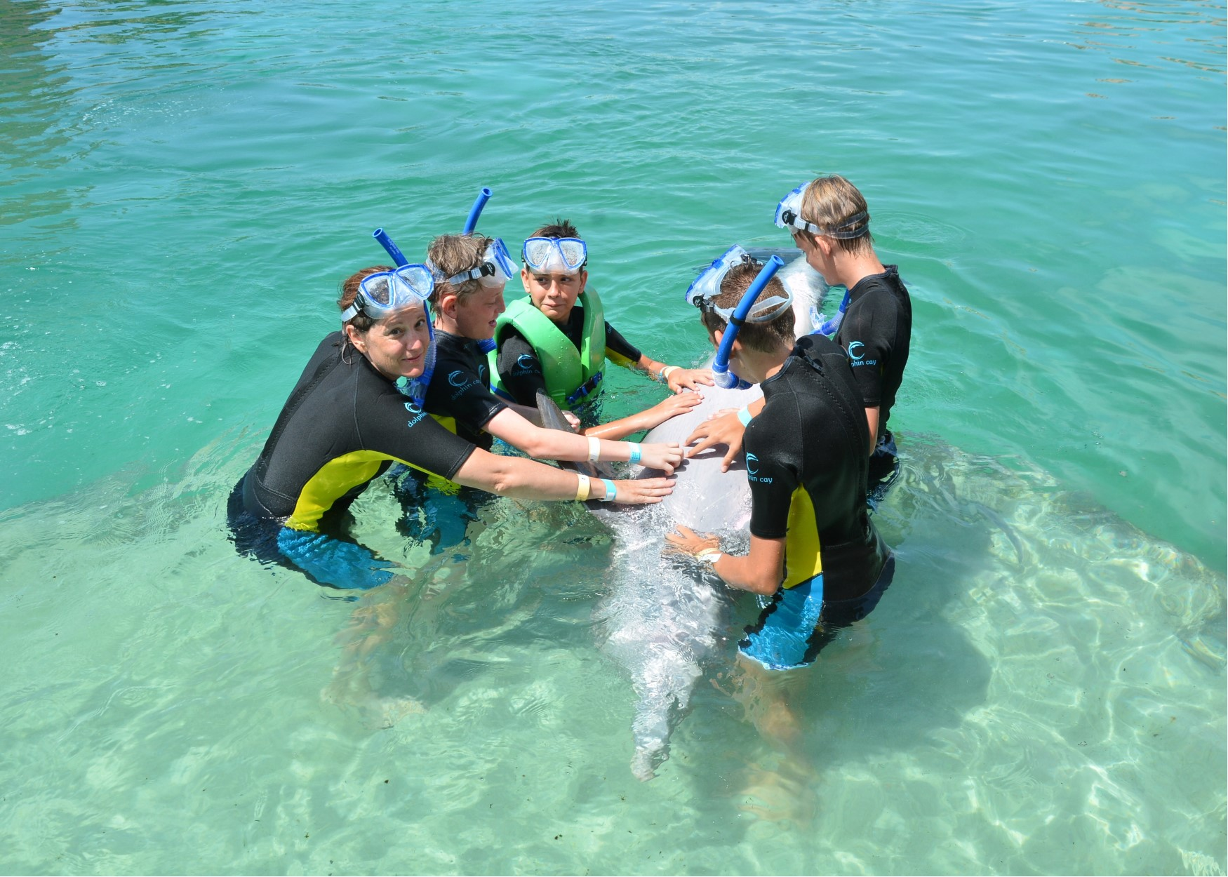 jardine boys petting dolphins.jpg