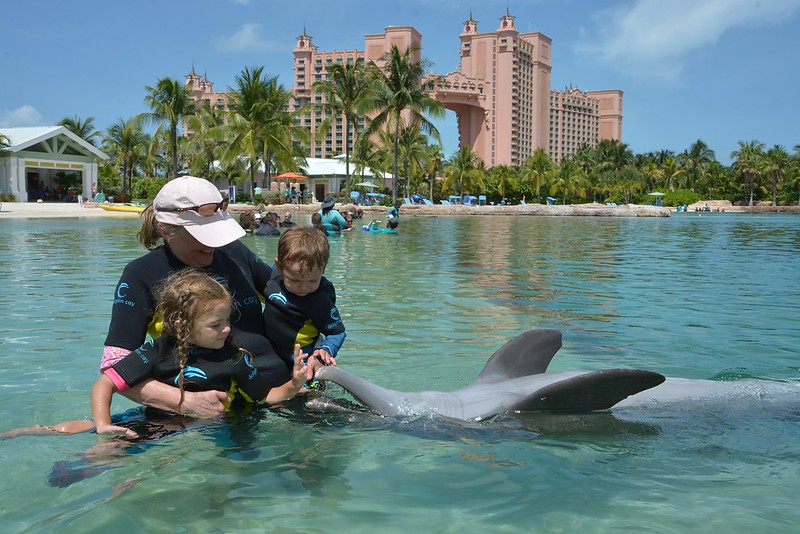mimi mia james feeding dolphin upsidedown.jpg