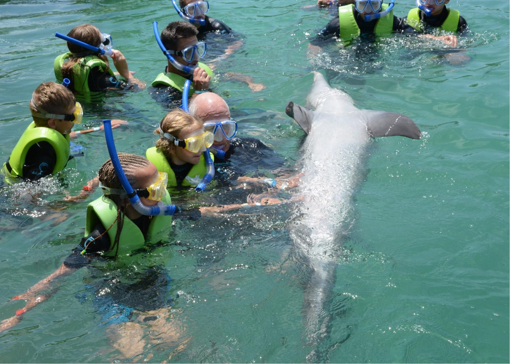 pops hallie pet dolphin.jpg