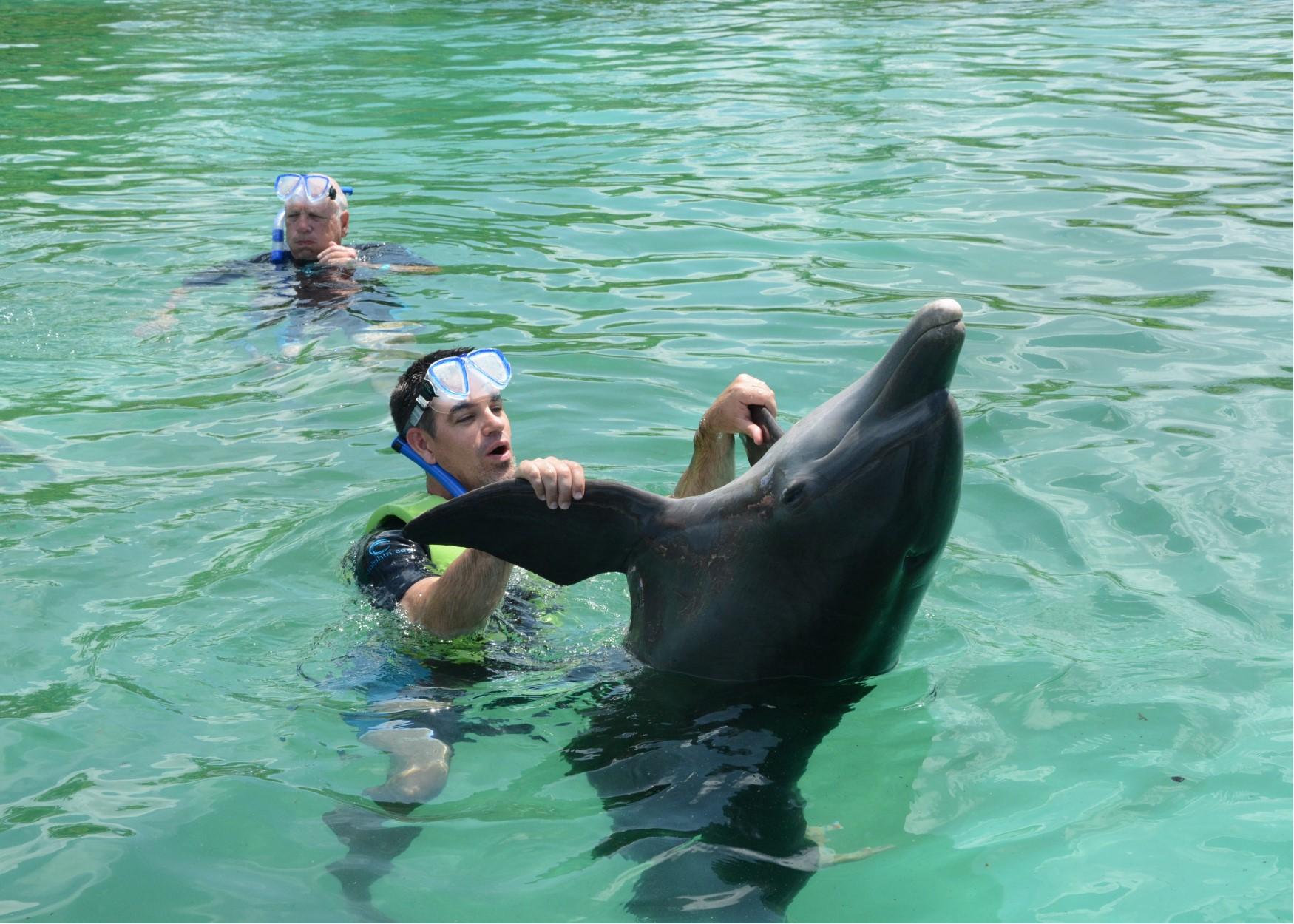 warren dolphin dance.jpg