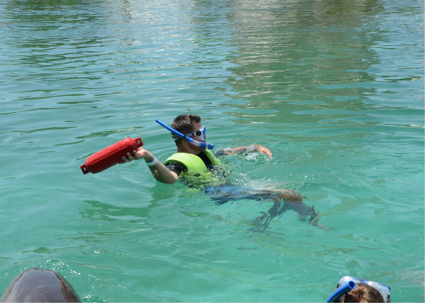 warren dolphin fetch.jpg