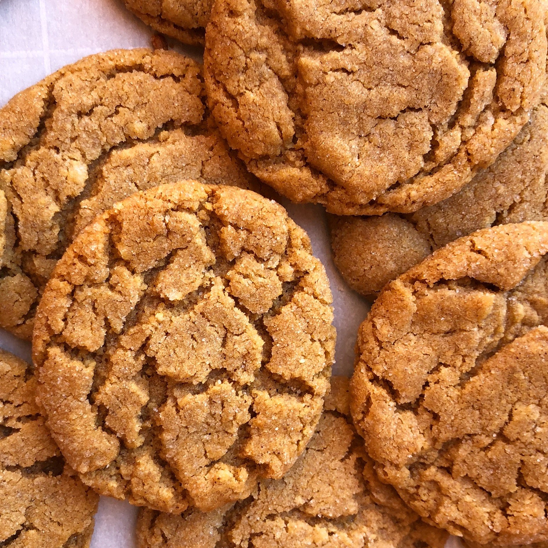 ginger cookies 1.JPG
