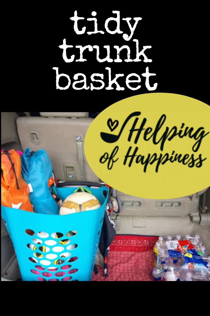 tidy trunk basket pin.png