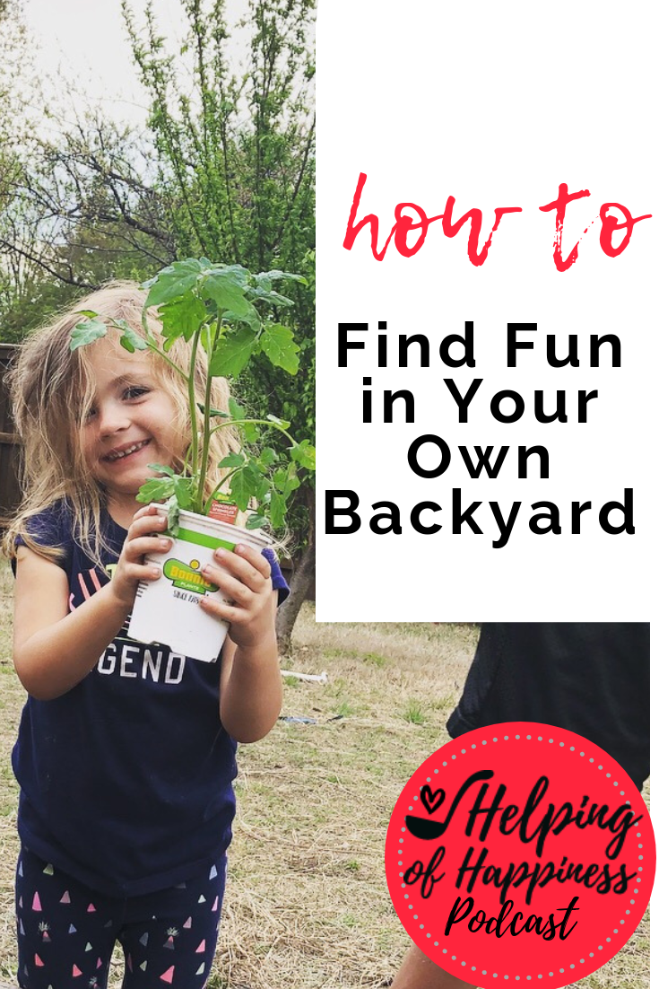 how to find fun in your own backyard episode 70 pin 2.png