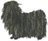 boulette-the-dog.jpg