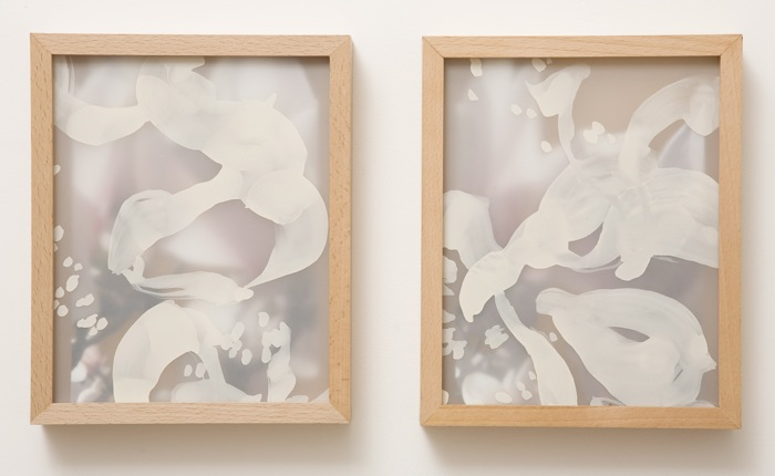 magnolia - white   (diptych)  lacquer, drafting film, photograph   2009