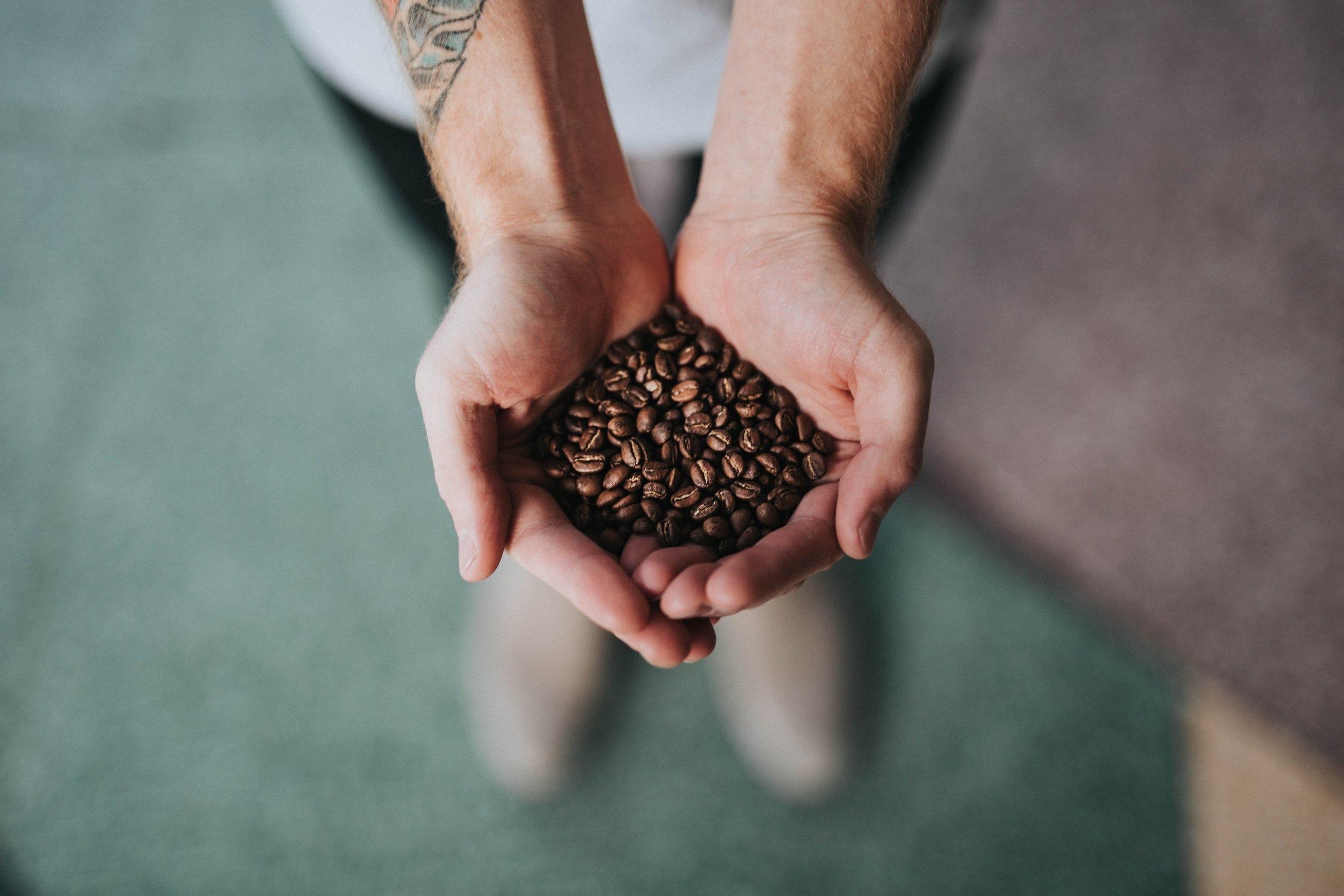 Puerto Rican Coffee - 80% of coffee farms were destroyed by Maria.You can support local coffee farmers by purchasing a bag of Puerto Rican coffee.Shop for coffee