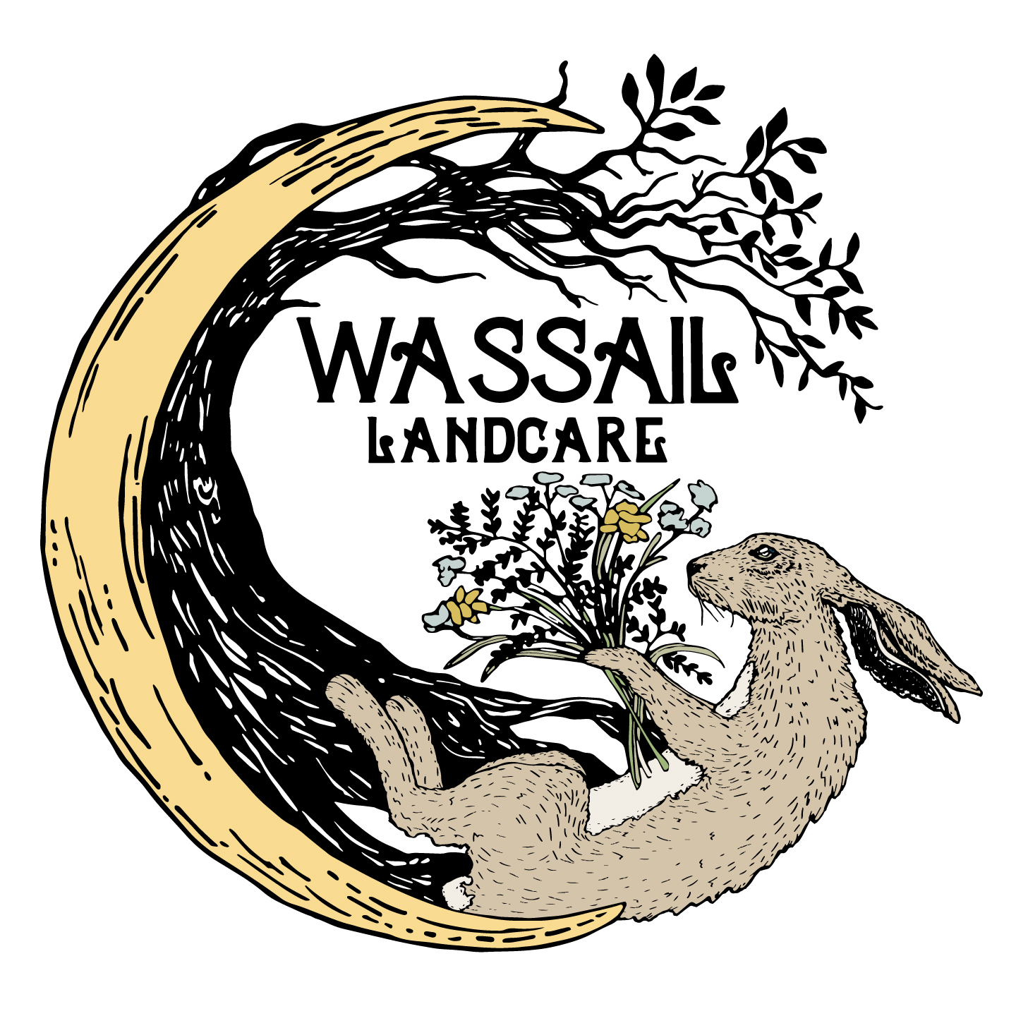 Wassail-Landcare-Full-Illustration-Logo-COLOR-THEME-NEUTRAL-Hare&Moon-TRANSPARENT.jpg