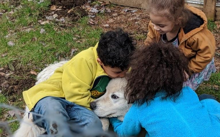 spring 2019 cutie and kids 3.jpg
