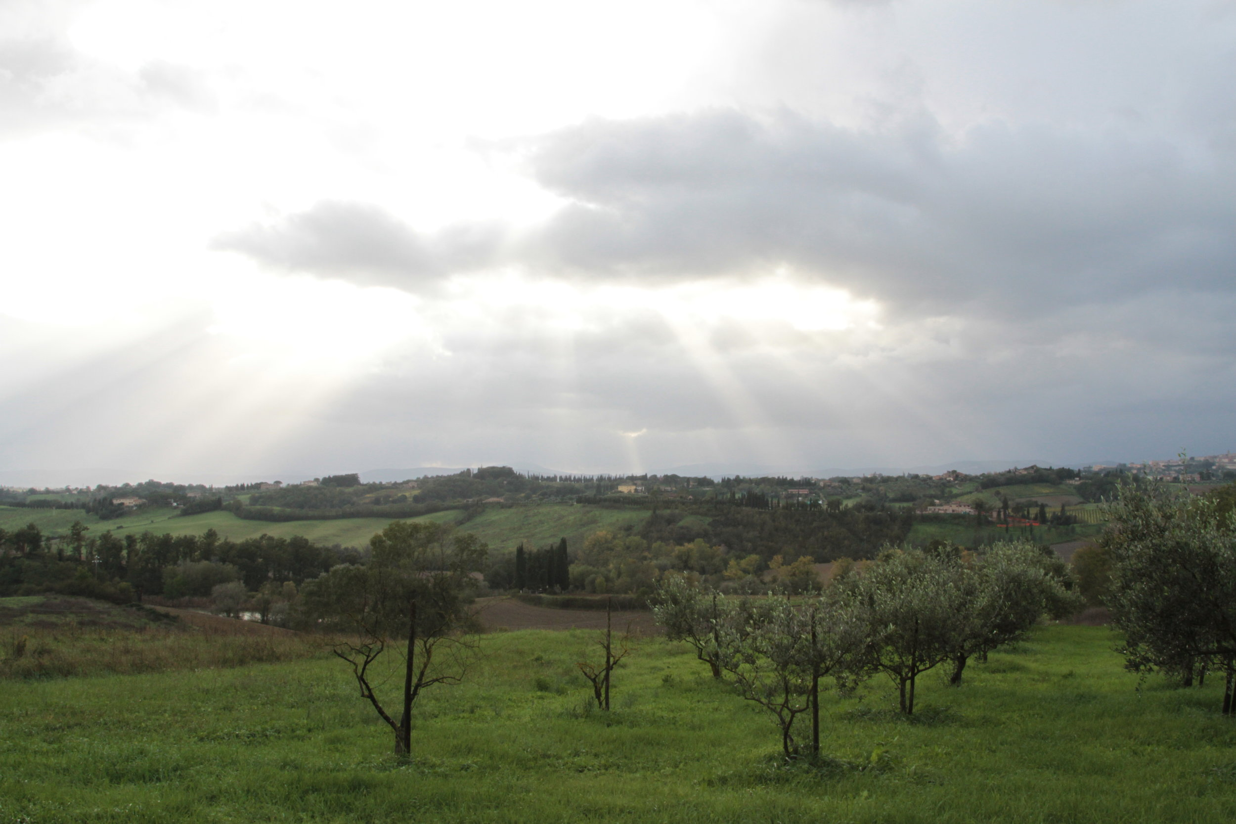 siena-countryside_8181258130_o.jpg