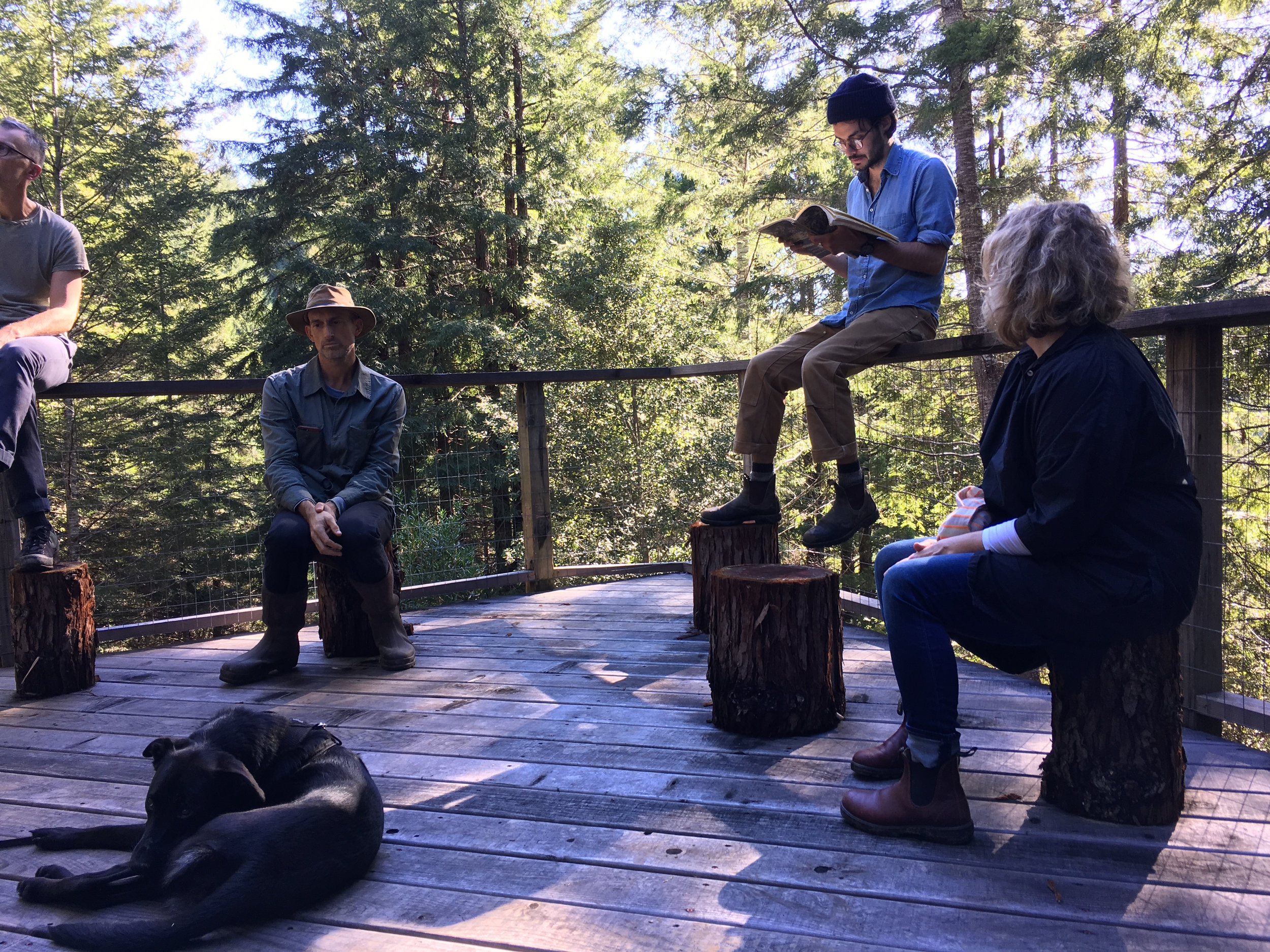 Convening on deck of Salmon Cabin.  Companion Planting: A Prologue , Salmon Creek Farm, February 3, 2018.