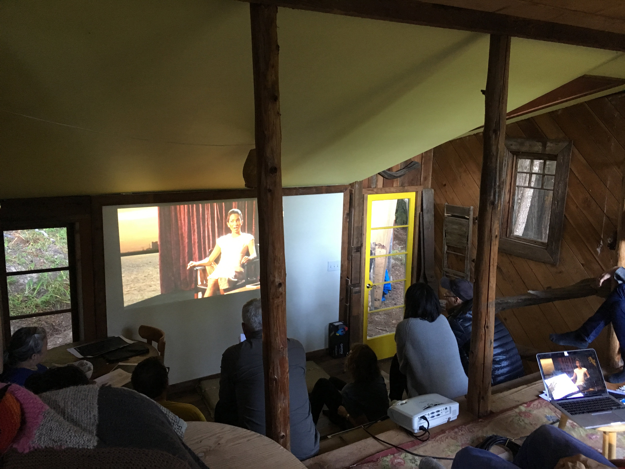 Companion Planting . Module: Economics, led by Agnieszka Gratza, screening of  Museum Futures: Distributed , a film by Marysia Lewandowska commissioned by Moderna Museet Stockholm, Sweden, on the occasion of the museum's 50th anniversary in 2008.Dawn Cabin, June 8, 2018.