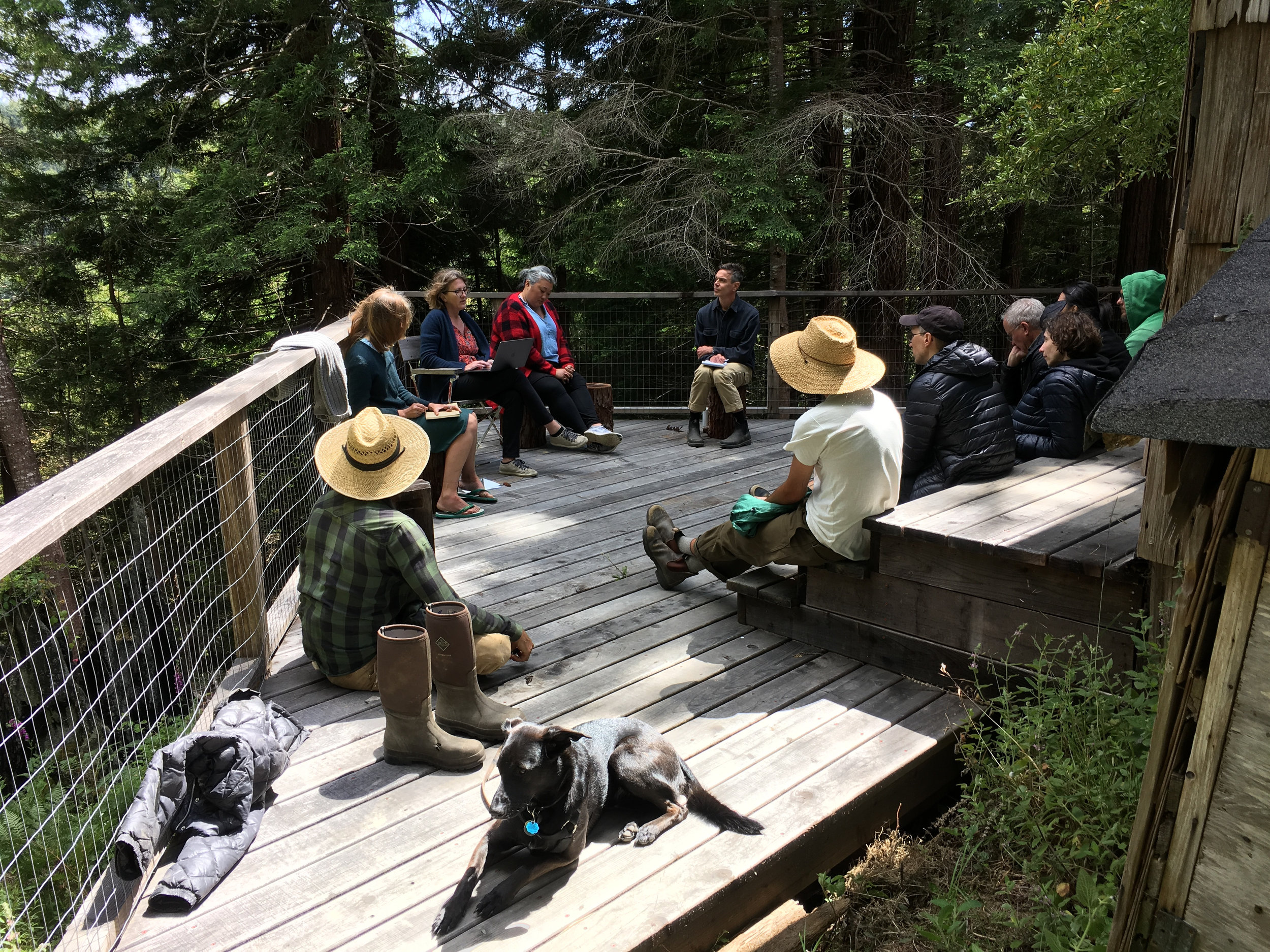 "Companion Planting . Module: Audiences, led by Shannon Jackson. Reading of two pieces ""Don't get me wrong, I love art"" and ""Ten Things that Bother Me about the Audience Question."" Salmon Cabin deck, Salmon Creek Farm, June 9, 2018."