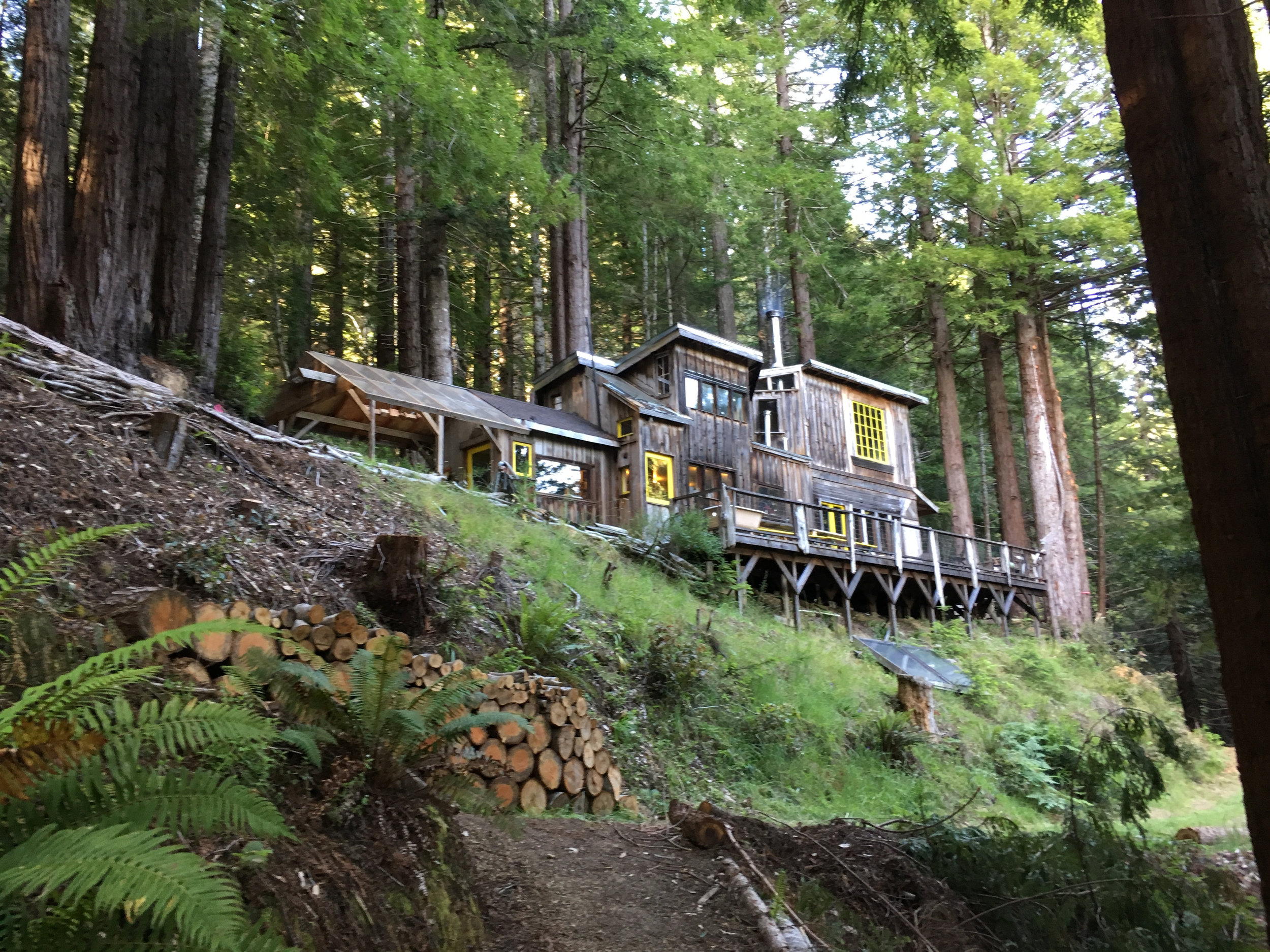 Dawn Cabin, Salmon Creek Farm, June 2018.