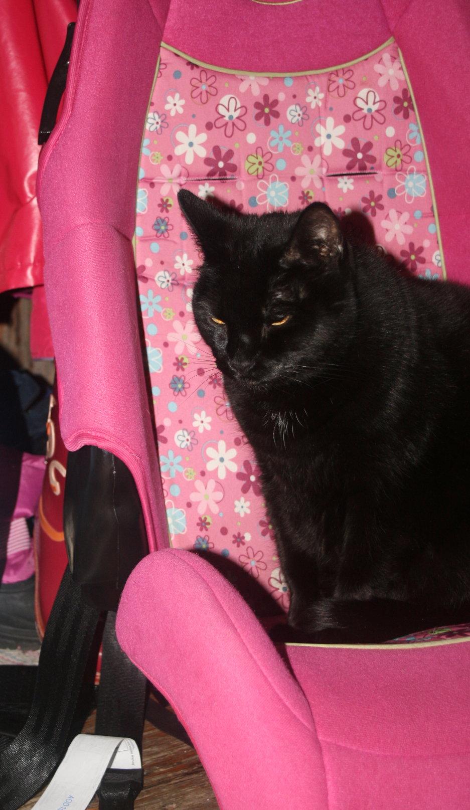 Tinkerbell in the car seat.jpg