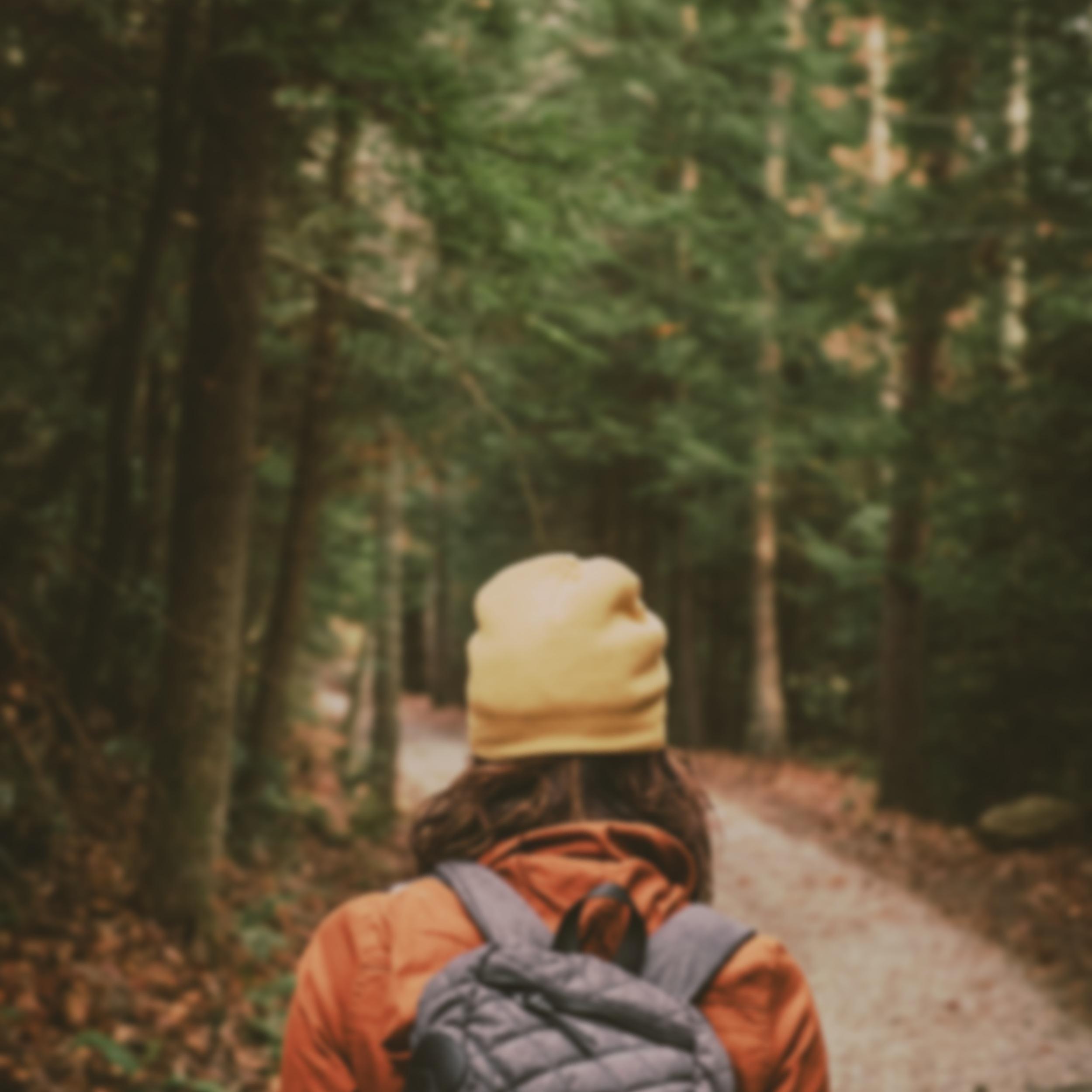 Walking Tours -