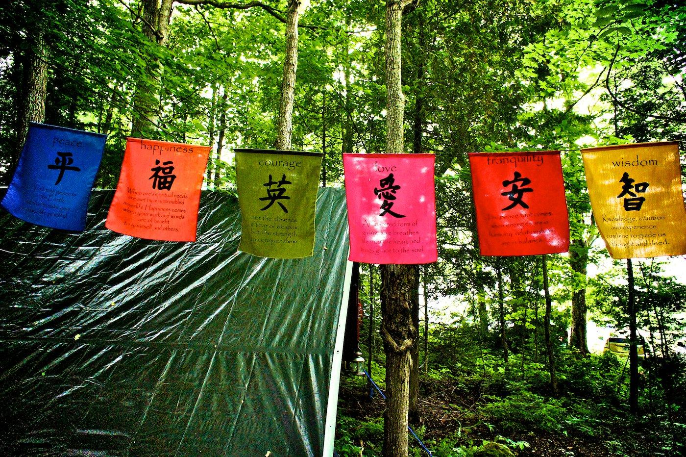 flags in trees.jpg