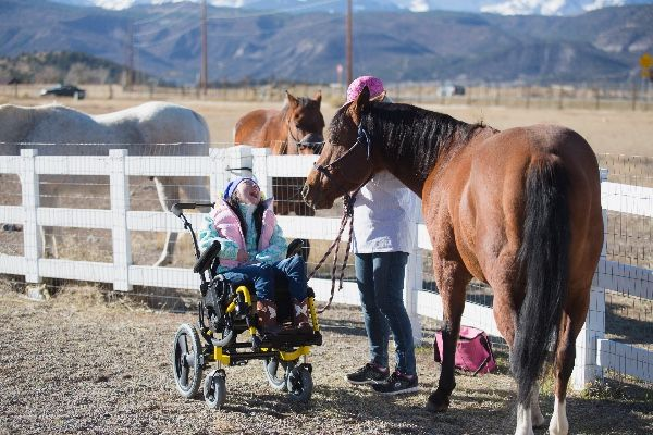 Our Mission - The mission of Equine Empowerment is to empower brave-hearted actions and inspire positive changes in individuals, families, groups and communitiesLearn More