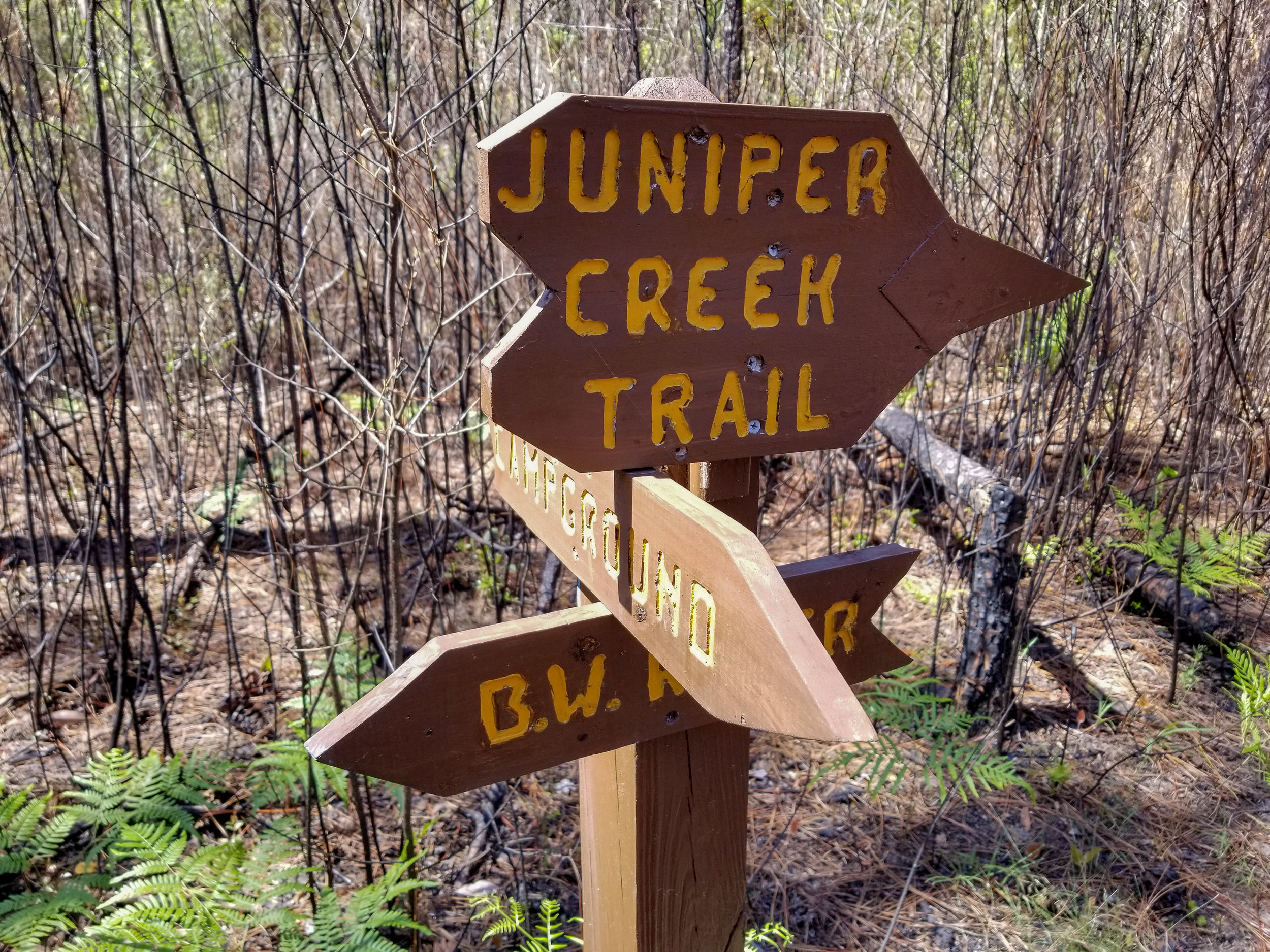 Trail Marker in the Blackwater River State Park