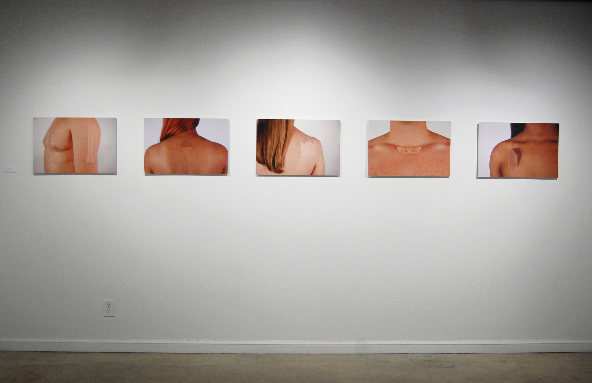 "Figure 8:  Suburban Growth Series  (installation view), digital prints, 24""x16"" (individual prints)"