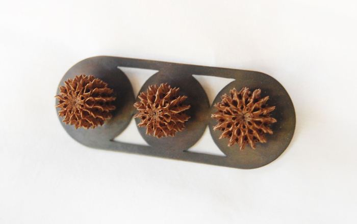 """LeBrie's Brooch,  Australian pine cones, copper, steel, 3"""" x 1¼"""", 2016"""