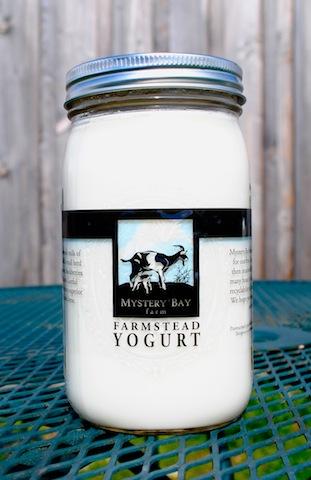 Qt Yogurt.jpg