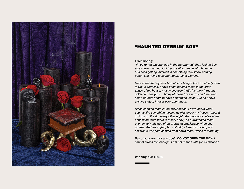 stern_topic_haunted_ebay_publication_0005.jpg