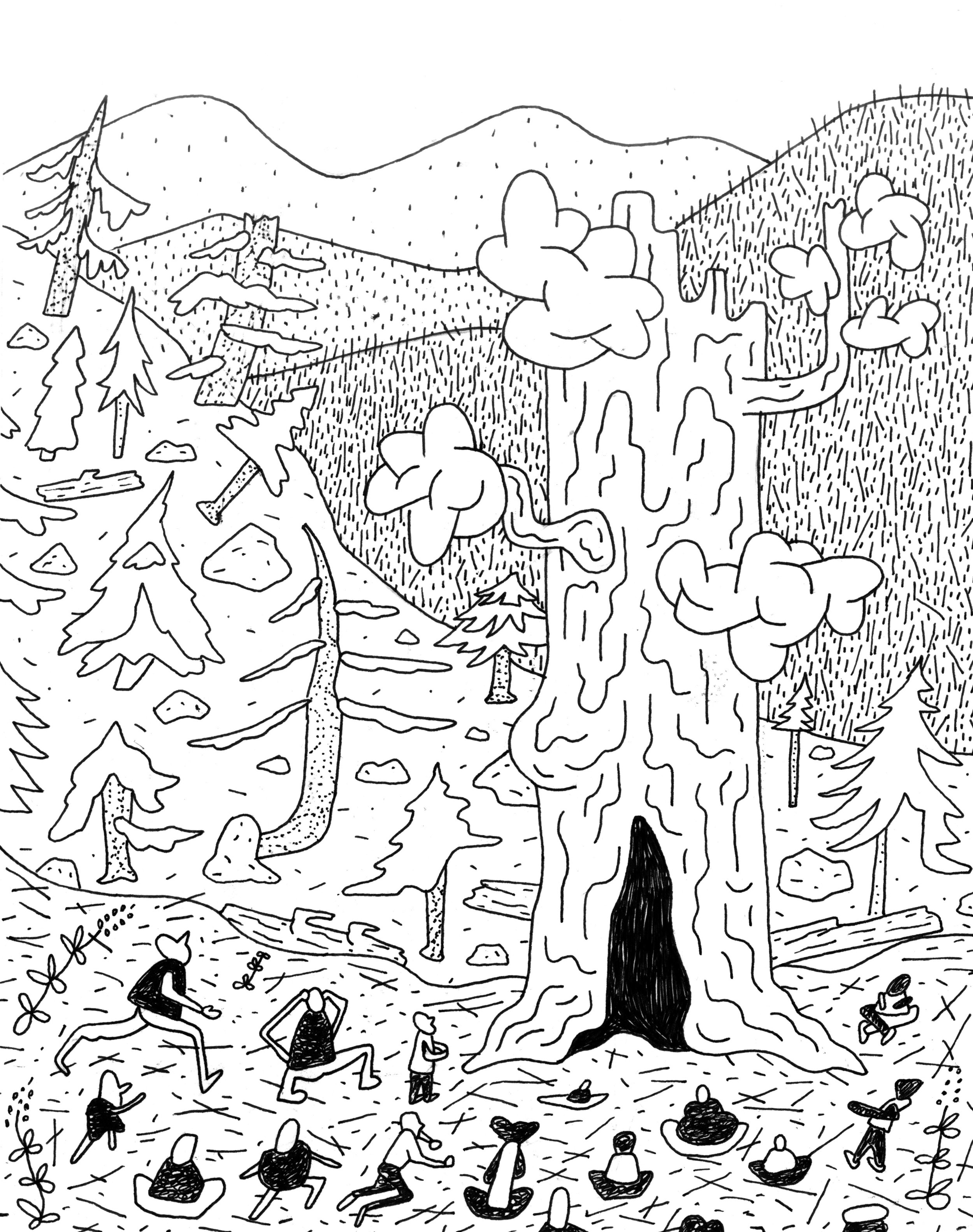 Sequoia-god_web_3215.jpg