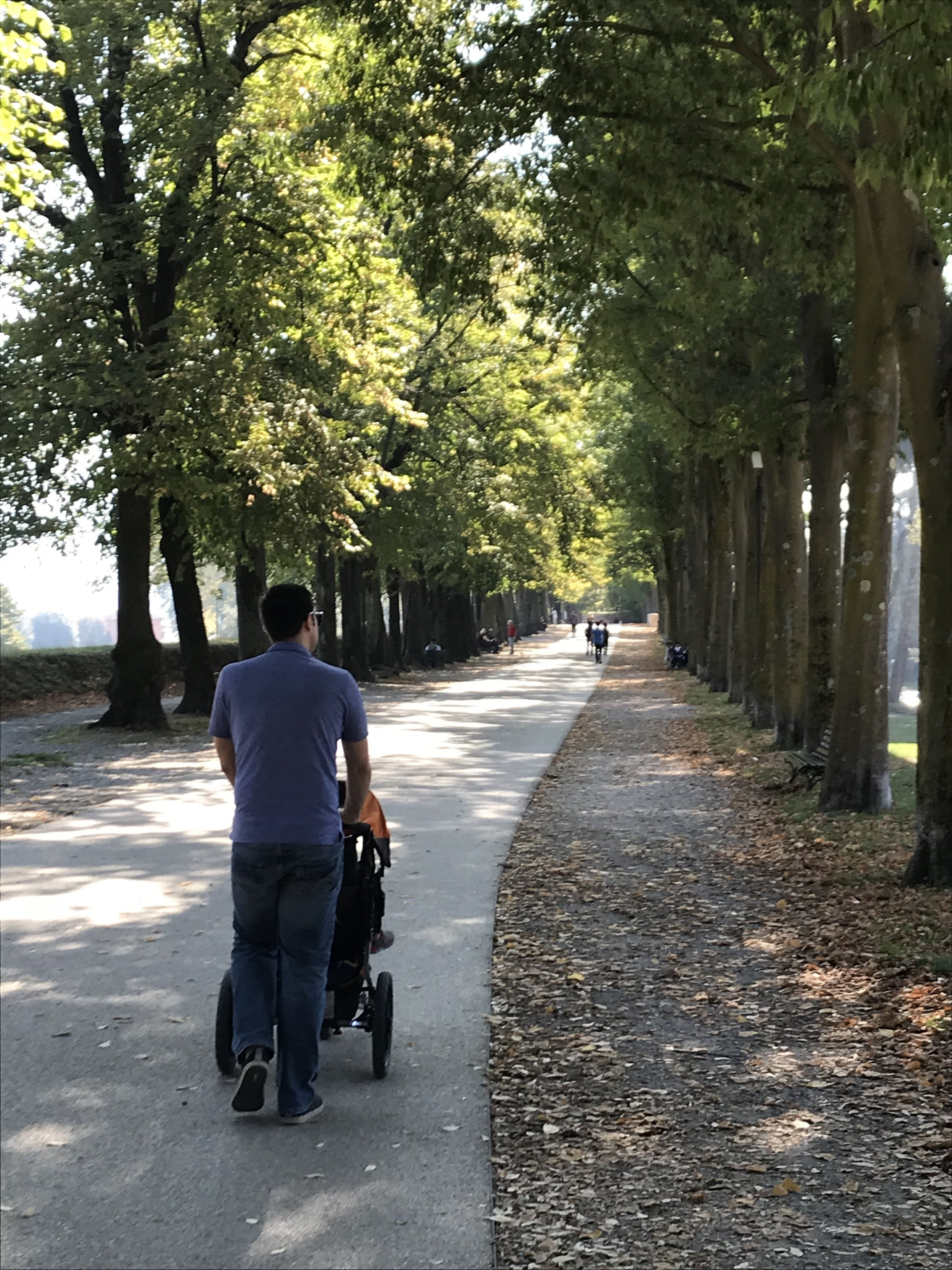My husband pushing the stroller along the ancient walls of Lucca which is now a perfect walking loop!