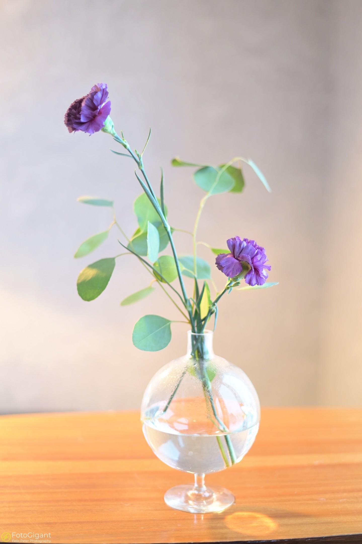 Flower-Photography_3.jpg