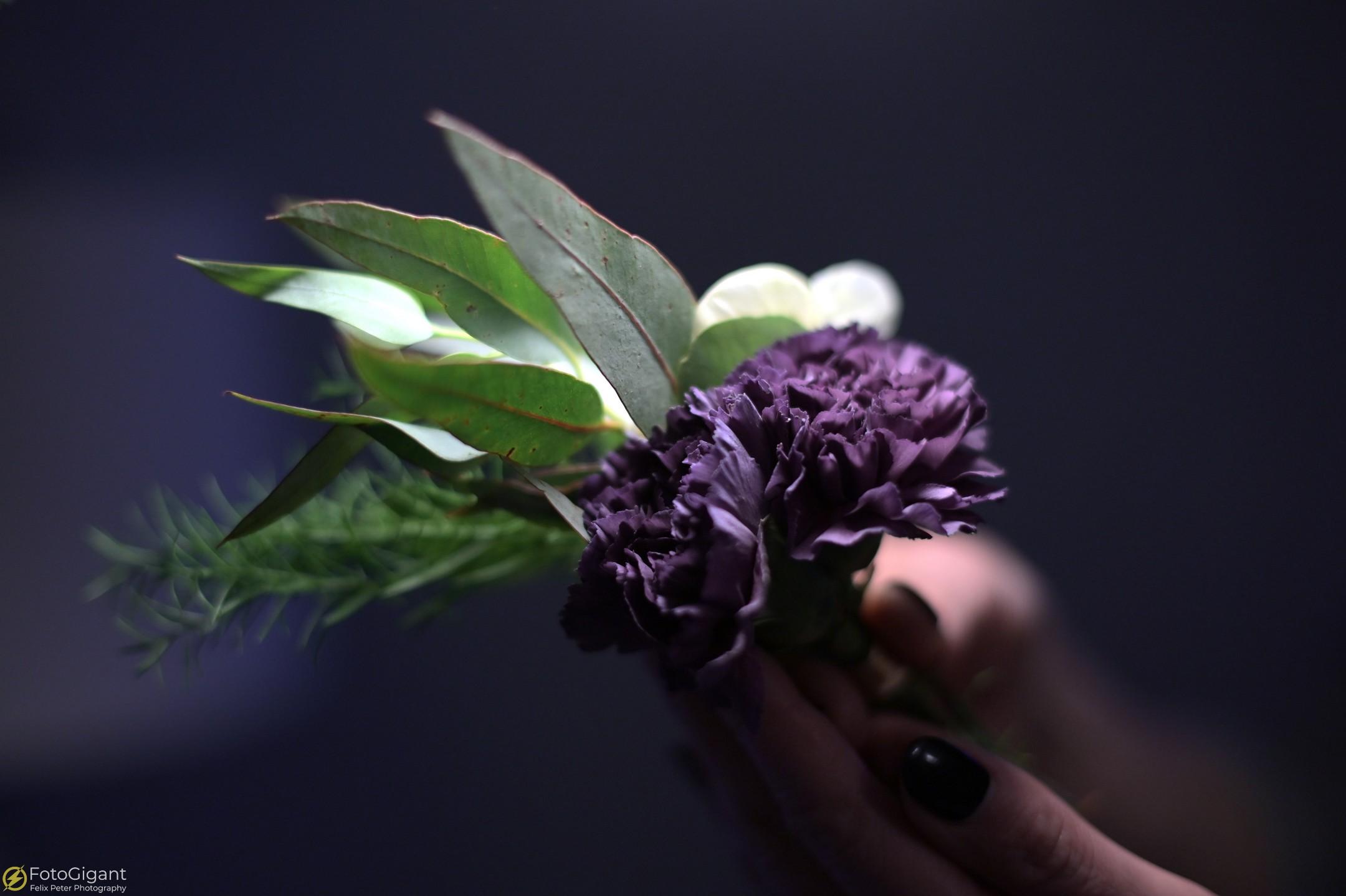 Flower-Photography_7.jpg
