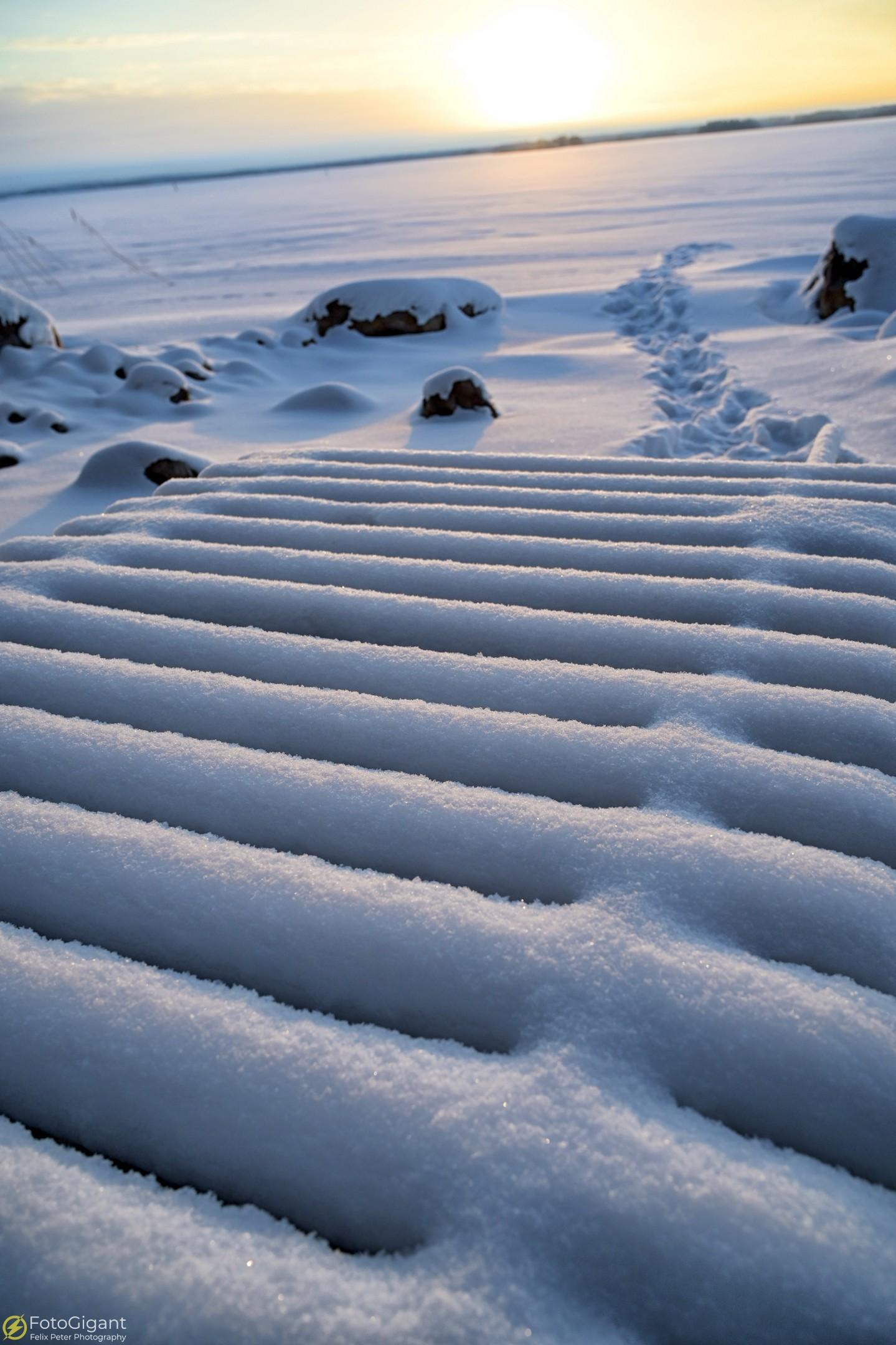 Finland-Photography_11.jpg
