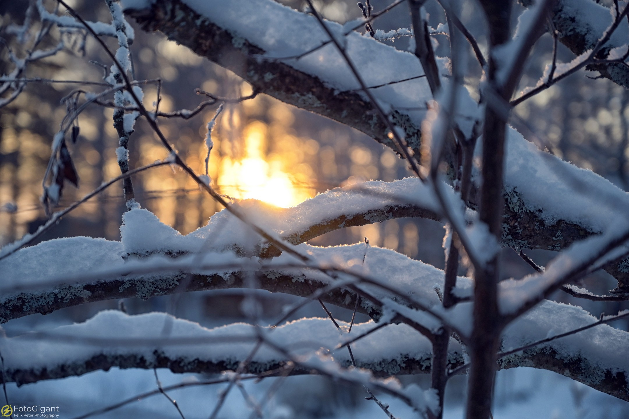 Finland-Photography_15.jpg