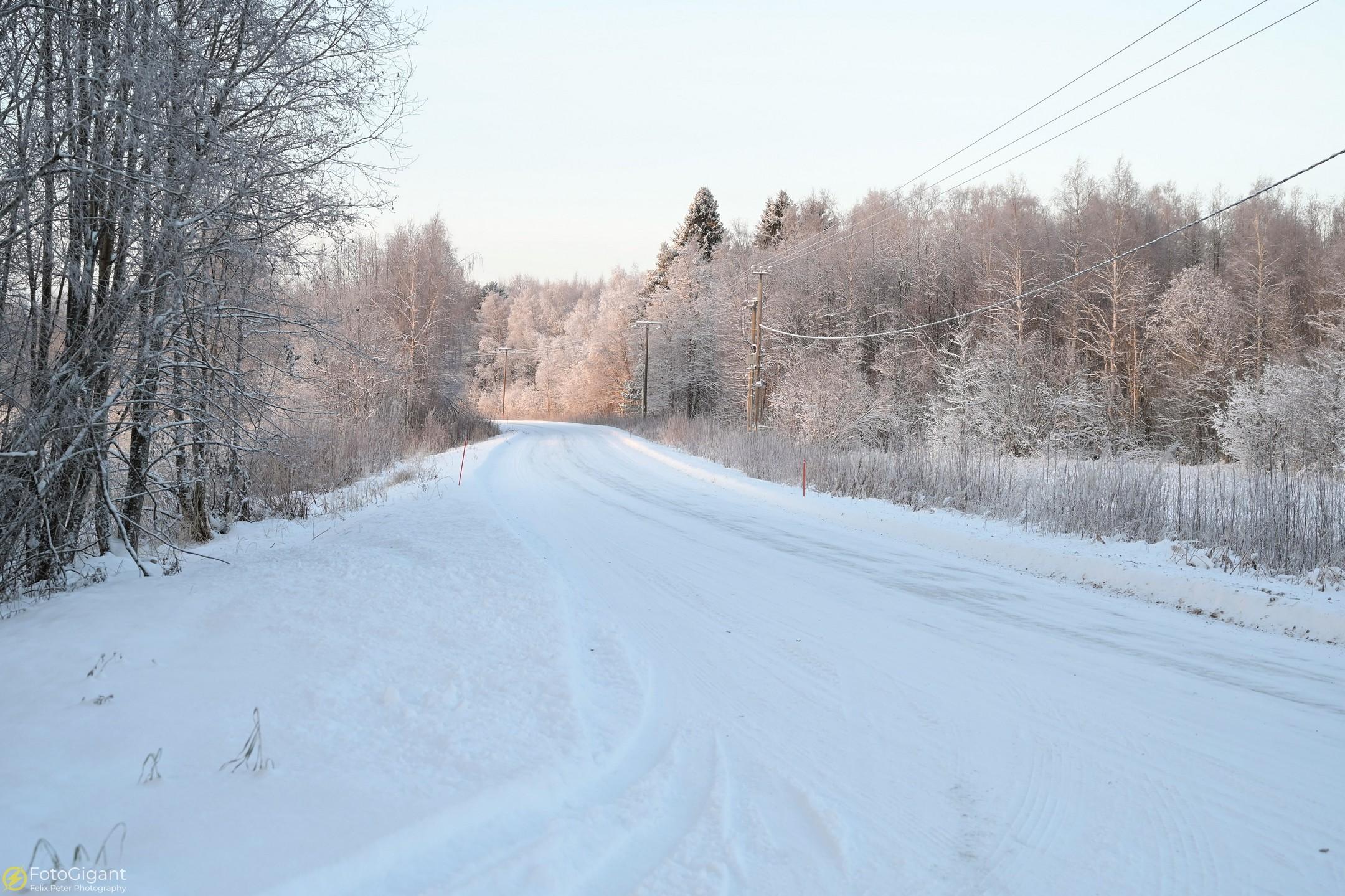Finland-Photography_14.jpg