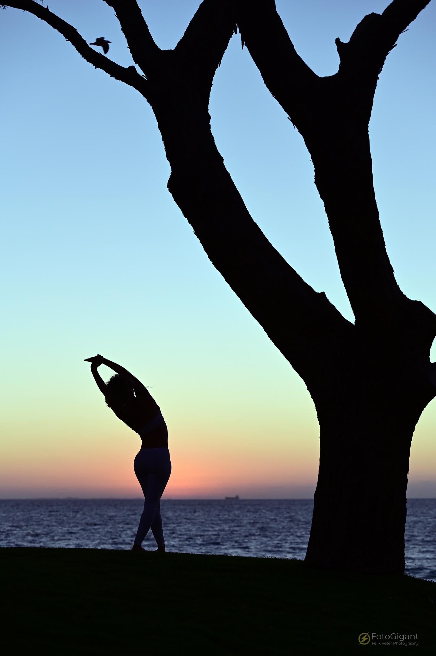 Pilates_Yoga_Silhouettes_13.jpg