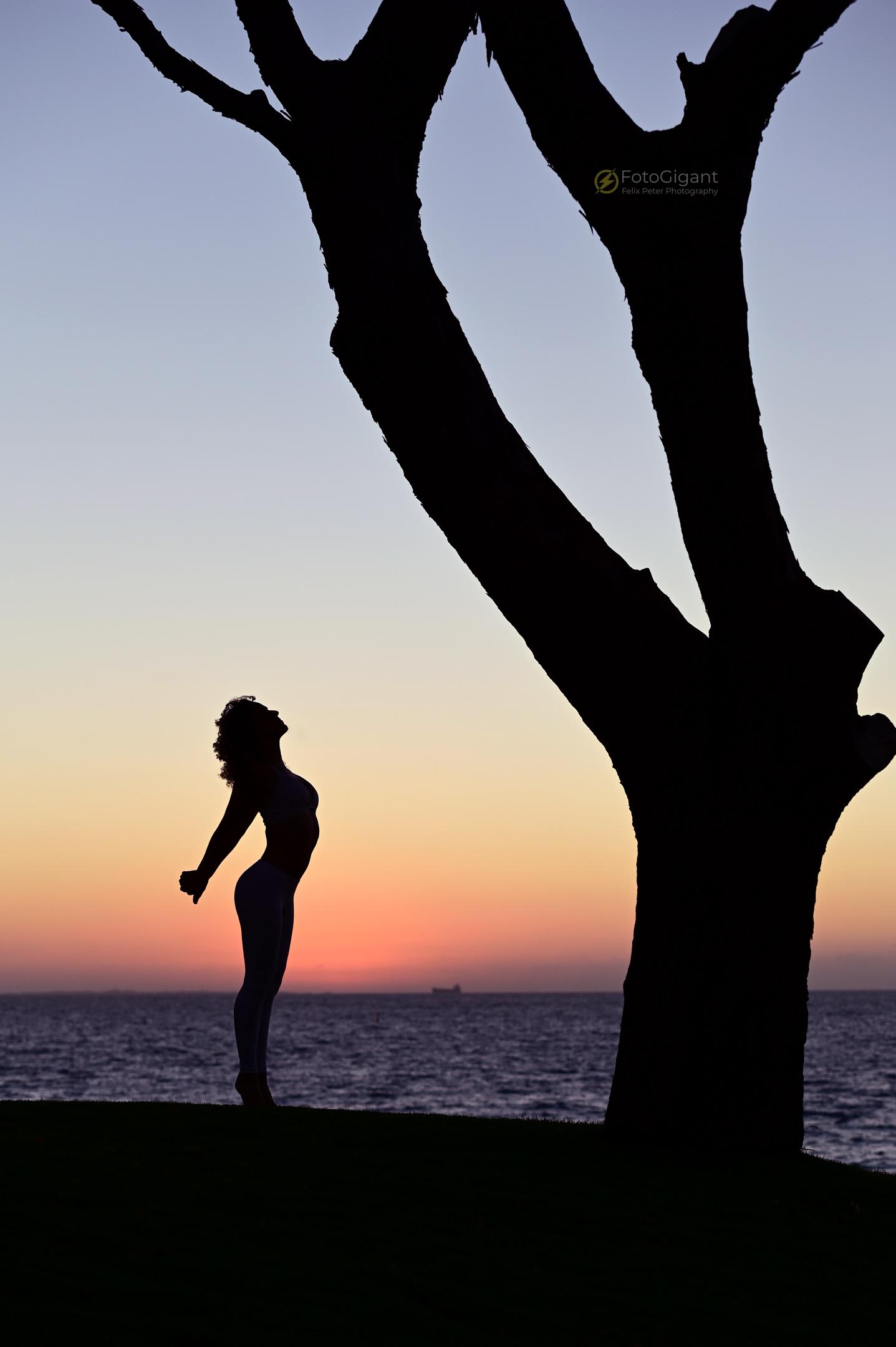 Pilates_Yoga_Silhouettes_14.jpg