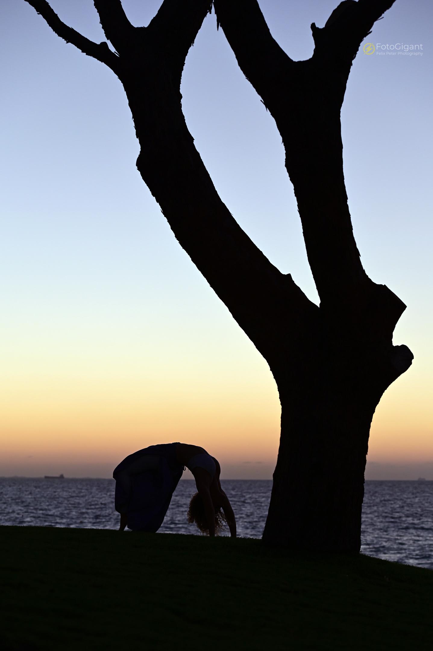 Pilates_Yoga_Silhouettes_15.jpg