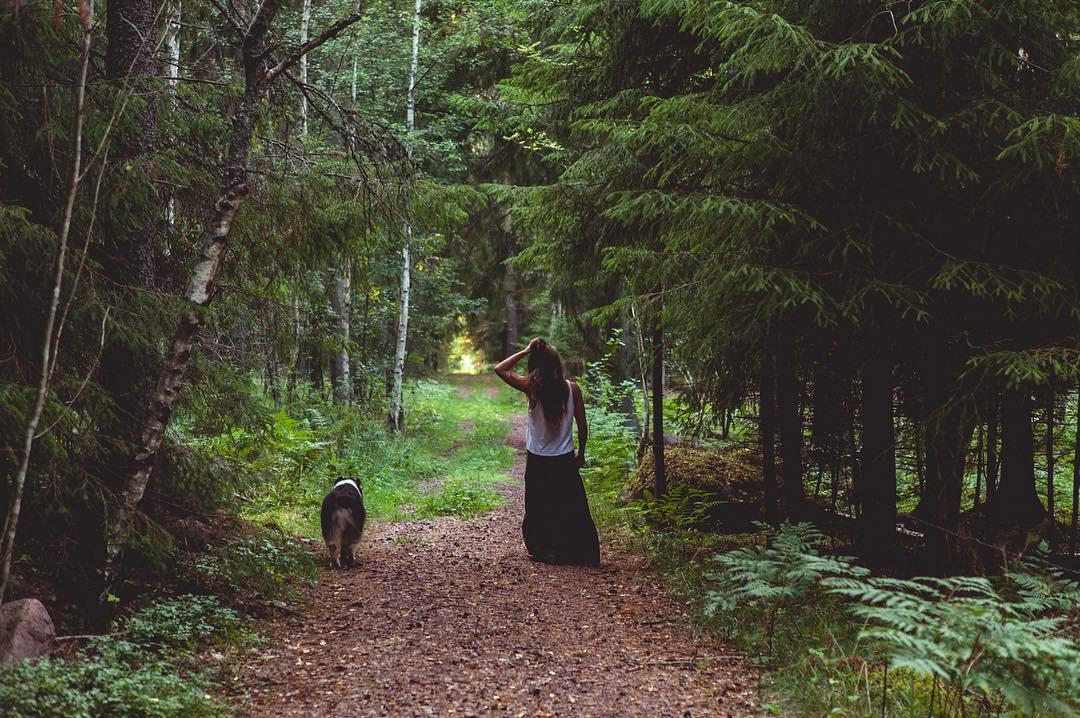 Skogen bakom vår yogashala. Kim Lindström ©