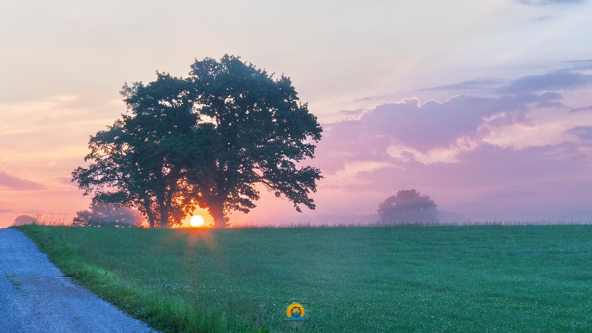 Morgenidyll